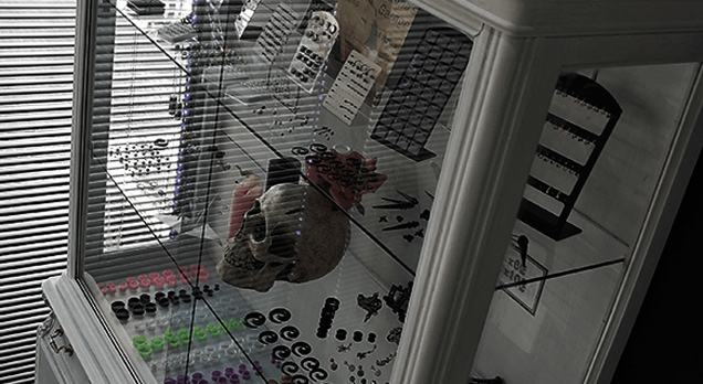 Tienda de Piercing genital en Torrejón de Ardoz